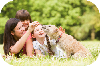 Dog Training and Family Needs